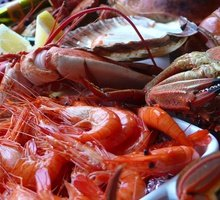 We bring you the best seafood, fresh products directly from ...